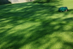 Robottiruohonleikkuri nurmikolla