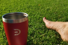 Kahvitauko nurmikolla